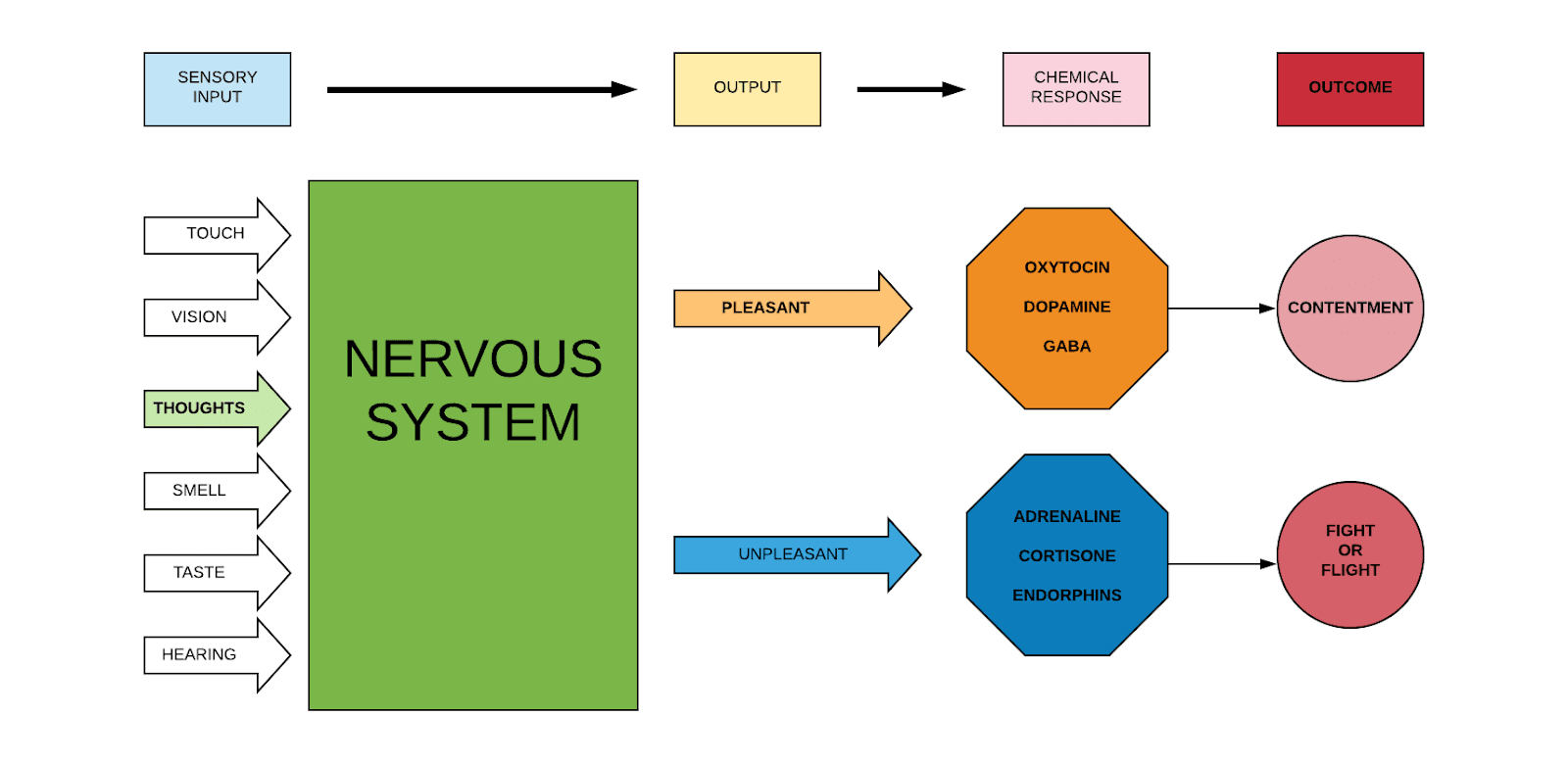 Stress - fight response diagram